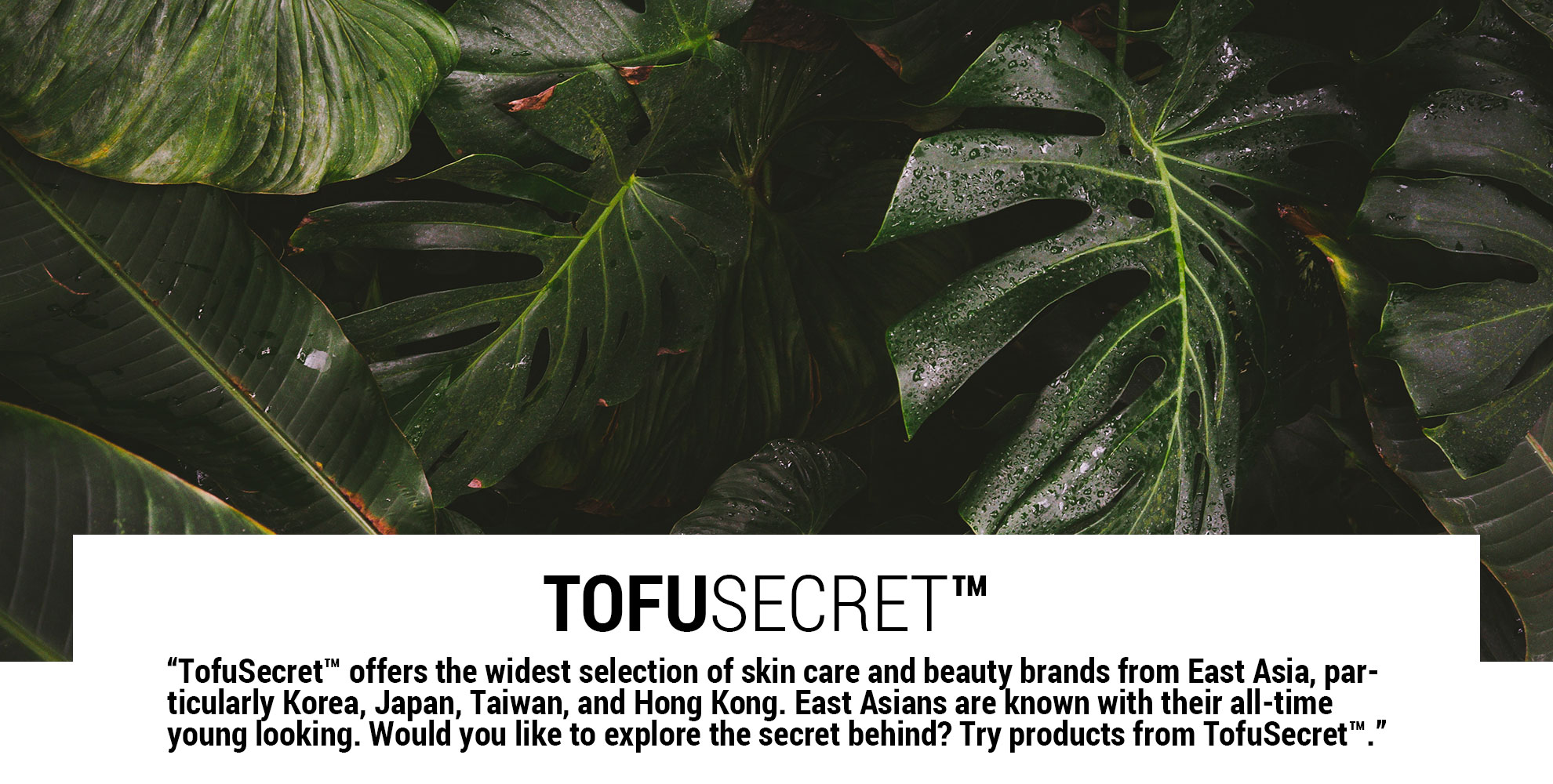 TofuSecret™ offers the widest selection of skin care and beauty brands from East Asia, particularly Korea, Japan, Taiwan, and Hong Kong.