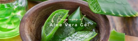 article_aloevera