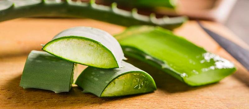 6 Easy Uses of Aloe Vera Gel